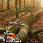 Спил деревьев, спилить, спиливание, валка, снос зданий, срезание деревьев, киев, буча, белая цер