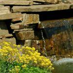 Естественный пруд. Оформление пруда. Обустройство пруда. Шеф Монтаж, Гарантия.