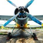 Обробка пшениці, соняшнику і кукурудзи літаком ан-2